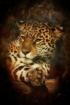 jaguar by greenfeed on DeviantArt