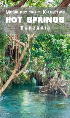 Kikuletwa hotsprings, Tanzania / Things to do in Moshi, Arusha / Hot springs / Chemka, Maji Moto Africa Destinations, Travel Destinations, Road Trip, Safari, Viewing Wildlife, Future Travel, Africa Travel, Adventure Is Out There, Travel Guides