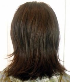 Medium length brown hair with layers