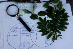 Stromová klimatizace | Učíme venku Scissors, Bicycle Kick