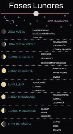 Ciclo lunar: Sincronízate como el más pro ⋆ Luna Dominante
