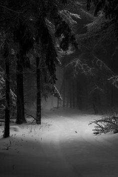 New Landscape Photography Woods Winter Scenes Ideas Winter Photography, Landscape Photography, Nature Photography, Monochrome Photography, Beautiful World, Beautiful Places, Winter Szenen, Winter Night, Snow Night