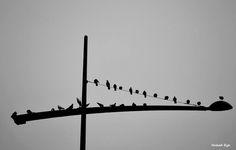 Σκέψεις: αφηρημένα, Τάσος Ορφανίδης Blog, Blogging