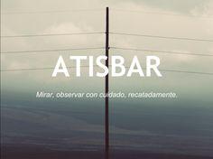 atisbar_otras20palabras