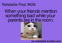 gif cat gifs cats animated animation that awkward moment relate relatable that moment that moment when