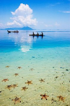 Semporna, Sabah in Indonesia. Canoe past starfish and mountains.