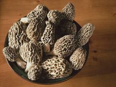 First of the spring 2014 Morel Harvest from Virginia - Cori Sampson