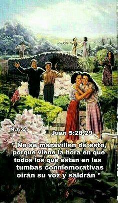 Jw Bible, Bible Text, Bible Scriptures, Jehovah Names, Jehovah Witness, Biblical Quotes, Bible Quotes, Jehovah's Witnesses Humor, Jehovah Paradise
