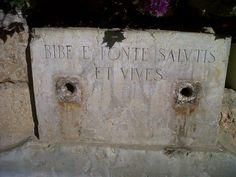 @marilolimo: Bibe e fonte salutis et vives! ...