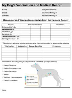Dog Vaccination Record