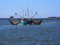 Fotowettbewerb 2017 | Hooge Sailing Ships, Boat, Vehicles, Photos, Boating, Cars, Boats, Vehicle