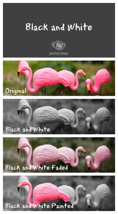 The classic Black and White photo effect just got more fab. Try it all over, just a bit faded or brush it on.
