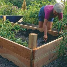 Growing vegetables in raised beds. Get more food from better soil with less water with raised beds. Landscape designer Linda Chisari shares her design (and materials list), along with advice on sizing and adding a convenient irrigation system. Garden Boxes, Edible Garden, Raised Beds, Building Raised Garden Beds, Garden Planning, Dream Garden, Lawn And Garden, Garden Projects, Garden Inspiration