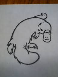platypus tattoo - Google Search