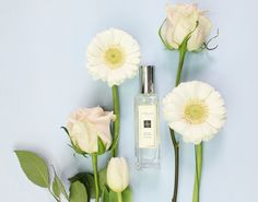 Orange-Blossom-Jo-Malone