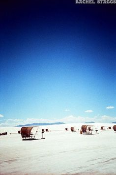 white sands national monument picnic tables by rachel staggs