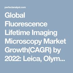 Global Fluorescence Lifetime Imaging Microscopy Market Growth(CAGR) by 2022: Leica, Olympus, Zeiss and Becker & Hickl | Perfect Analyst