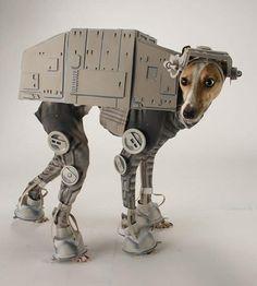 bones cachorro cosplay fantasia star wars at-at