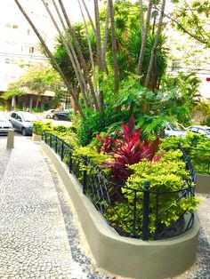 Laranjeiras-RJ
