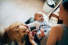 #El mejor regalo para su bebé es la leche materna - ElHeraldo.hn: ElHeraldo.hn El mejor regalo para su bebé es la leche materna…