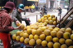 Chất lượng trái bưởi Diễn của chúng tôi hoàn toàn vượt trội so với các loại bưởi lai tạp không rõ nguồn gốc trên thị trường liên hệ 0989341023