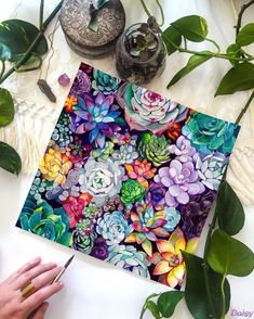 Succulent Garden - Watercolor Painting - Floral - Boho Illustration - Giclee Print - Home Decor - This is a print from the original illustration by Christine Lindstrom. Title – Succulent G - Boho Illustration, Garden Illustration, Illustration Art Drawing, Floral Illustrations, Painting & Drawing, Watercolor Paintings, Painting Canvas, Plants Watercolor, Floral Paintings