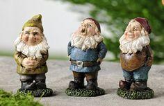 Miniature Gnomes