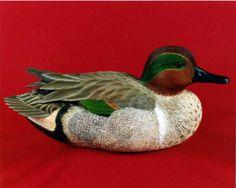 Green-winged Drake - Decorative Floating Lifesize