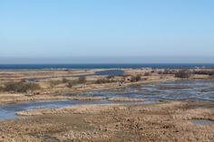 Vista des de l'observatori de Senillosa