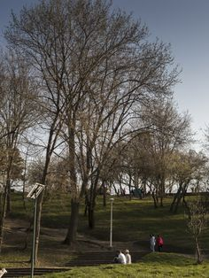 park, piknik, people, lawn, hill, trees, sitting, leisure, couple, color, sky, grass, watching, stairs,
