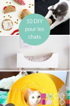 10 DIY pour les chats // http://www.deco.fr/loisirs-creatifs/photos-80878/