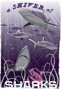 A Shiver of Sharks | Limited edition print | from £79.00 | collective nouns