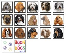 Book of Dogs vol 3