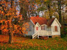 Anna - magiskt & vansinnigt: fina hem