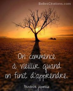 The Nicest Pictures: sunset French Phrases, French Quotes, French Words, Positive Attitude, Positive Quotes, Urdu Quotes, Quotations, Quote Citation, Meditation Music