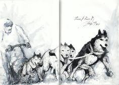개썰매 dog sledding