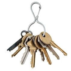 Võtmerõngas / Carabiner Key Clip – Infini