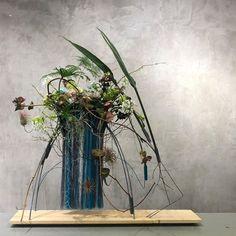 Plant Hanger, Glass Vase, Artist, Plants, Floral Designs, Instagram, Home Decor, Decoration Home, Room Decor