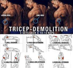 Tricep Demolition! Hardcore Triceps Muscle Training Plan - Yeah We Train !