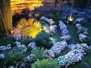 Umpherston Sinkhole Mount Gambier South Australia