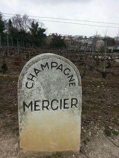Champagne Mercier, Epernay, France