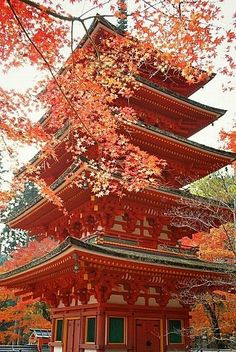 長谷寺:紅葉と五重塔 Hase dera temple, Nara