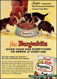 1962 Burgerbits Dog Food Ad // Beagle Hound by DoubleLMomEphemera