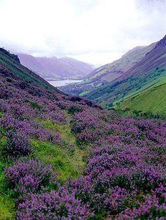 Breathtaking Scottish Highlands //