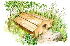 La cabane à hérisson Balcony Garden, Garden Bridge, Garden Plants, Diy Recycle, Recycling, Garden Online, Garden Animals, Gardening, Fauna