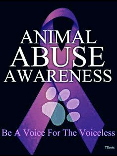 Animal abuse awareness - be a voice for the voiceless. The month of April is Prevention of animal cruelty. Racing Extinction, Save Animals, Animals And Pets, Strange Animals, Wild Animals, Stop Animal Cruelty, Animal Cruelty Quotes, Stop Animal Testing, Animal Welfare