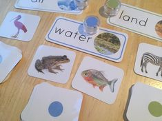 I used to carry a very similar set in my old shop, but discontinued it after feeling like it needed a bit of work done on it! Finally, here's a new set of land/air/water sorting cards! Whew!  12 animal cards for each area! #montessori #sorting #landairwater #animals #sortingactivity #montessorimaterials