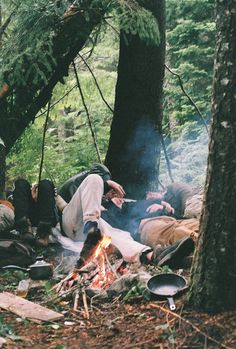 campfire in the wild nature, sleeping under the trees