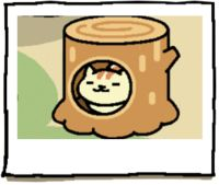 atsume neko apricot - Google Search