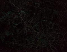 """Deeper Than Night"" by Photographer Coley Brown - BOOOOOOOM! - CREATE * INSPIRE * COMMUNITY * ART * DESIGN * MUSIC * FILM * PHOTO * PROJECTS"